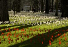 The Iraq Body Count Exhibit at Portland State University, Portland, Oregon, USA. Each white flag represents at least 5 Iraqis, and each red flag represents 5 Americans, killed as a result of the 2003 invasion of Iraq. As of March 15, 2008, at least 655,000 Iraqi civilians and 3,972 American soldiers have died. Photo: Lisa Norwood. (CC BY-NC 2.0).