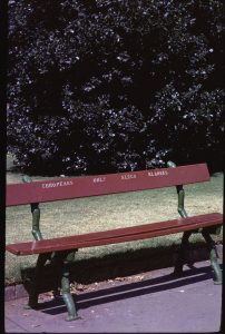 """Park bench in Joubert Park, Johannesburg, taken during the Apartheid era in about 1972. The text, """"Europeans only"""" appears in English and Afrikaans. Date: (digitised) 2013-11-14. Author: Martinvl. (CC BY-SA 3.0)."""