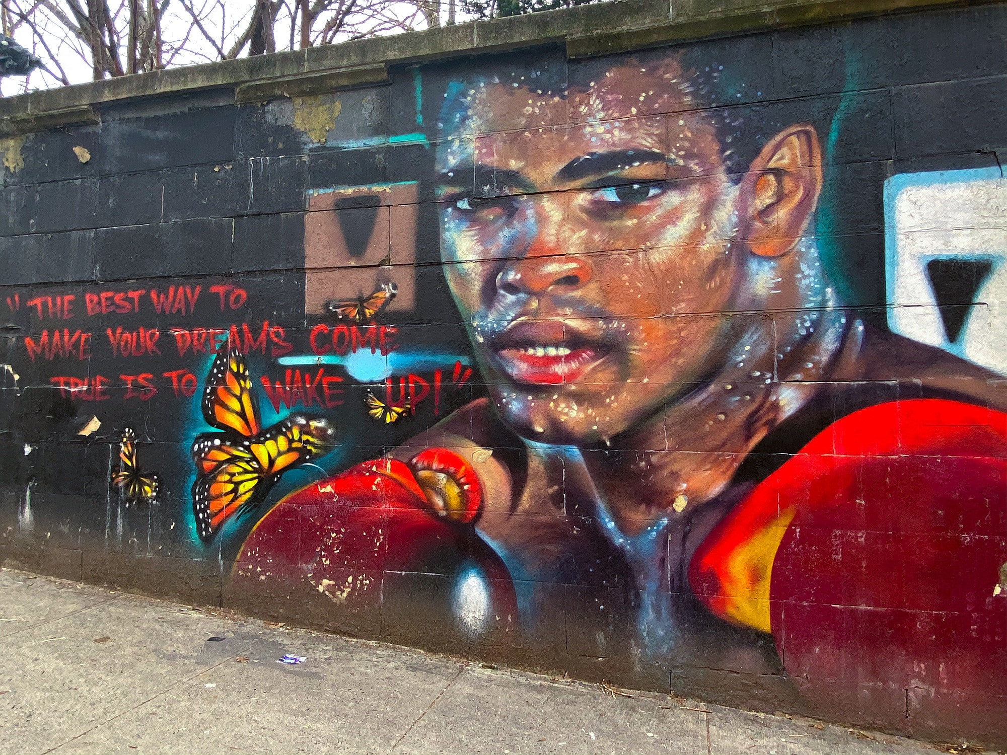 Muhammad Ali mural near Concourse, Bronx. Photo taken on January 30, 2020 by Jules Antonio. (CC BY-SA 2.0).