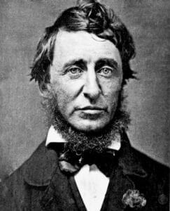Portrait (daguerreotype), black and white of Henry David Thoreau in June 1856. The writer-collar post a beard and is dressed in a black frock coat, a white shirt and a black bow tie. Made by by Benjamin D. Maxham (1821–1899). Public Domain.