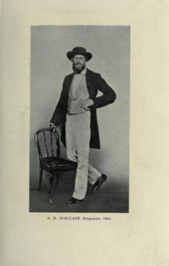 Alfred Russel Wallace in Singapore, 1862. Photo: Marchant, James; Wallace, Alfred Russel. Public domain.