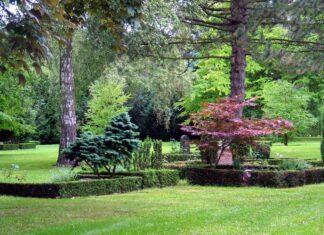 Billede fra Bispebjerg Kirkegård. Foto: ©2005 Hans Andersen. (CC BY-SA 3.0).